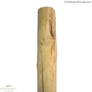 Holzpfosten Robinie rund, entrindet, gespitzt, Ø 7-10